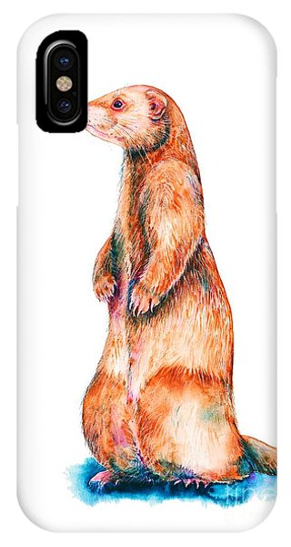 IPhone Case featuring the painting Cinnamon Ferret by Zaira Dzhaubaeva