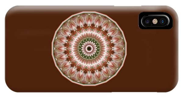 Cinnamon Roses And Thorns IPhone Case