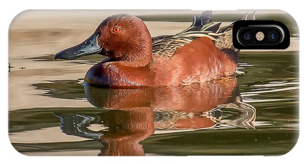 Cinnamon Teal Phone Case by Thomas Kaestner