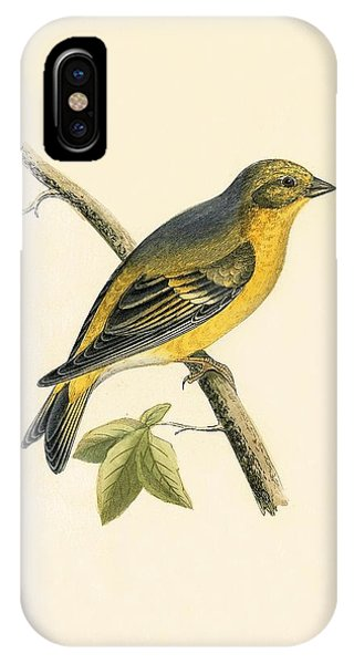 Citril Finch IPhone Case