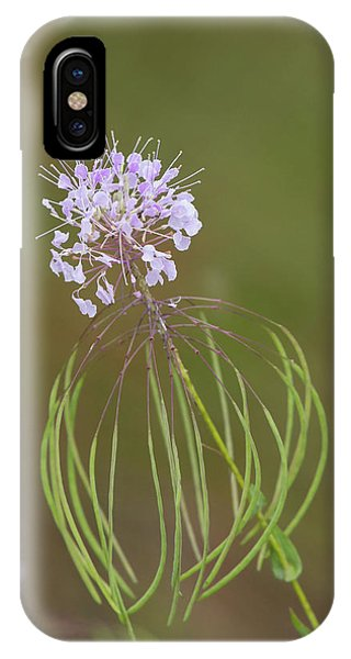 Clasping Warea IPhone Case