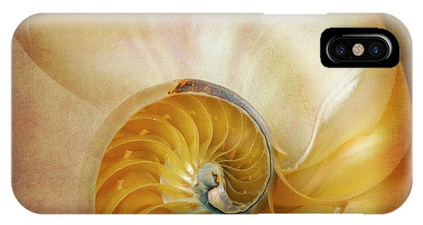 Earthy iPhone Case - Classic Nautilus Shell  by Garry Gay