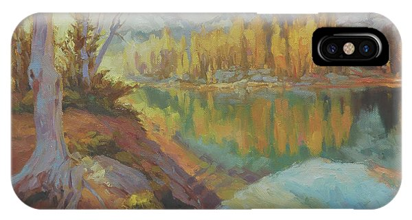 Back iPhone Case - Clearwater Revival by Steve Henderson