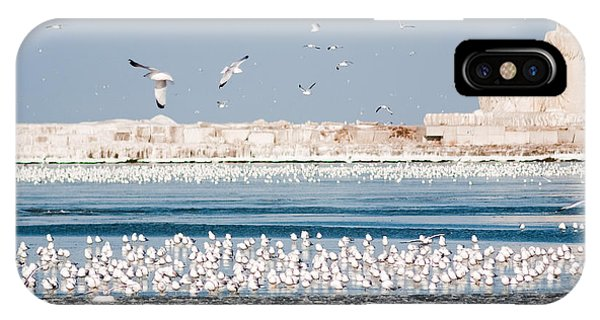 Cleveland Lighthouse In Ice  IPhone Case