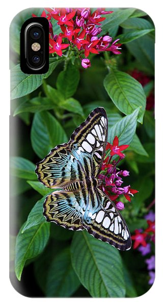 Clipper Butterfly On Star Flower IPhone Case