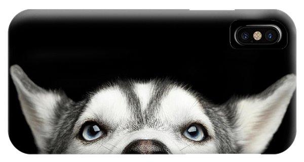 Close-up Head Of Peeking Siberian Husky IPhone Case