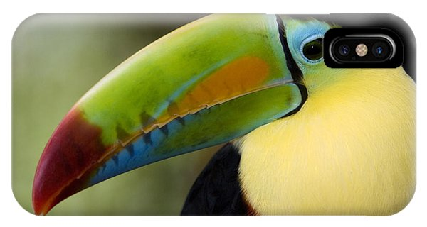 Close-up Of Keel-billed Toucan IPhone Case