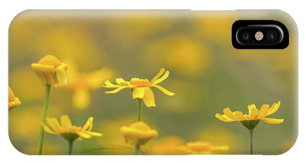 Close Up Of Yellow Flower With Blur Background IPhone Case