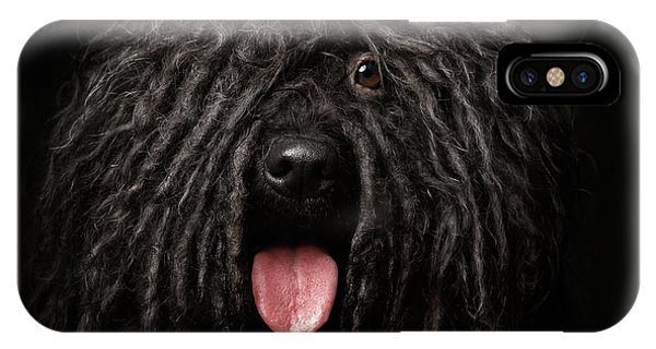Close Up Portrait Of Puli Dog Isolated On Black IPhone Case