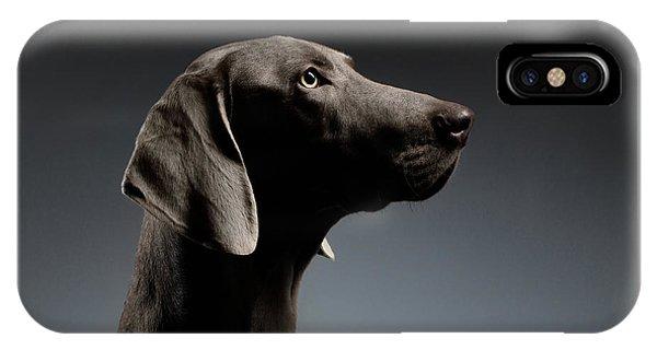 Dog iPhone X Case - Close-up Portrait Weimaraner Dog In Profile View On White Gradient by Sergey Taran