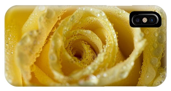 Close Up Yellow Rose IPhone Case