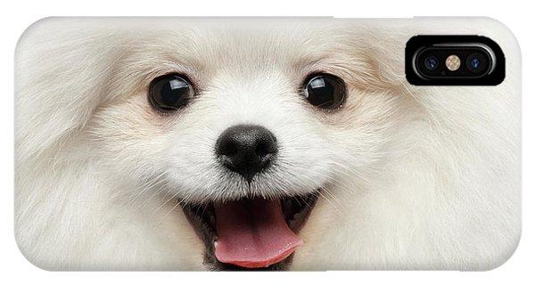 Dog iPhone X / XS Case - Closeup Furry Happiness White Pomeranian Spitz Dog Curious Smiling by Sergey Taran