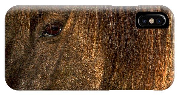 Closeup Of An Icelandic Horse #2 IPhone Case