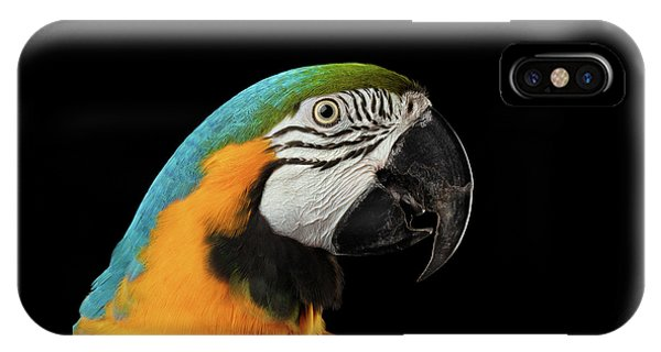 Closeup Portrait Of A Blue And Yellow Macaw Parrot Face Isolated On Black Background IPhone Case