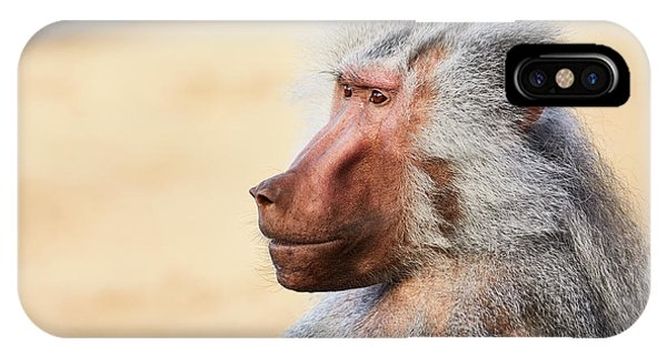 IPhone Case featuring the photograph Closeup Portrait Of A Male Baboon by Nick Biemans