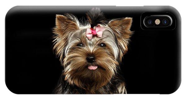 Dog iPhone X Case - Closeup Portrait Of Yorkshire Terrier Dog On Black Background by Sergey Taran