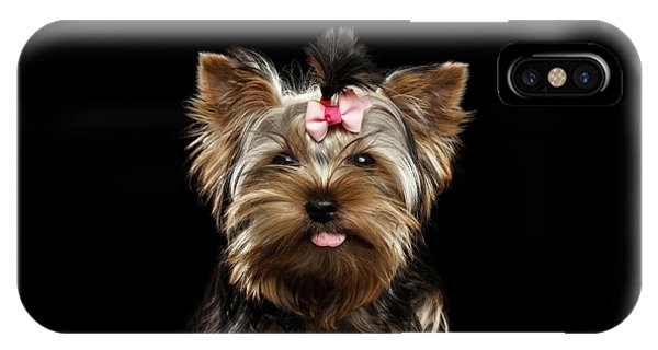 Dog iPhone X Case - Closeup Portrait Of Yorkshire Terrier Dog On Black Background by Sergey Taran