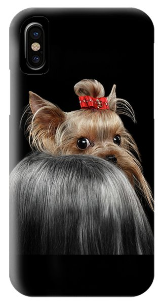 Dog iPhone X Case -  Closeup Yorkshire Terrier Dog, Long Groomed Hair Pity Looking Back by Sergey Taran
