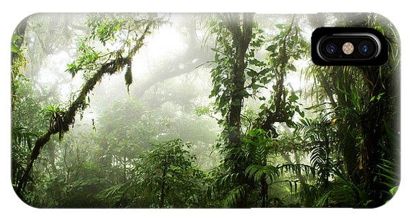 Jungle iPhone Case - Cloud Forest by Nicklas Gustafsson
