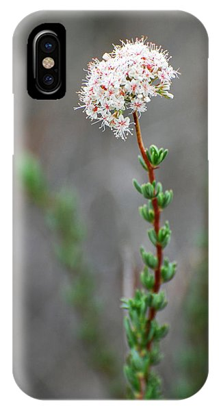 Cloud Puff Wildflower Phone Case by Jean Booth