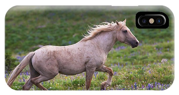 Cloud- Wild Stallion Of The West IPhone Case