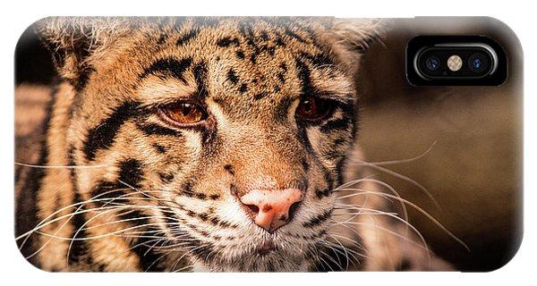 Clouded Leopard II IPhone Case