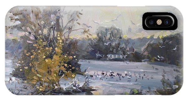 Seagull iPhone Case - Cloudy Sunset In Niagara Falls River  by Ylli Haruni