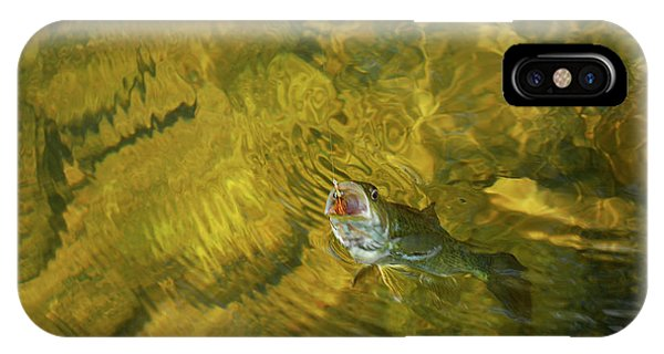 Clouser Smallmouth IPhone Case