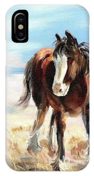 Clydesdale Foal IPhone Case
