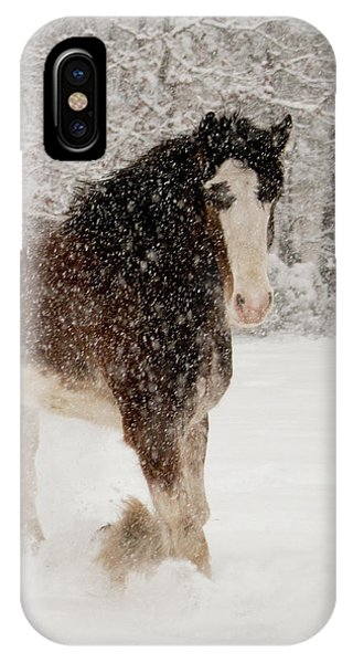 Clydesdale In The Snow IPhone Case