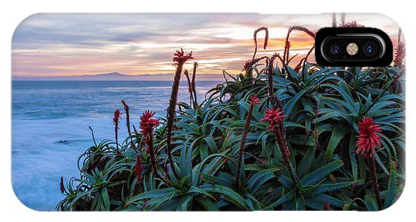 Coastal Aloes IPhone Case