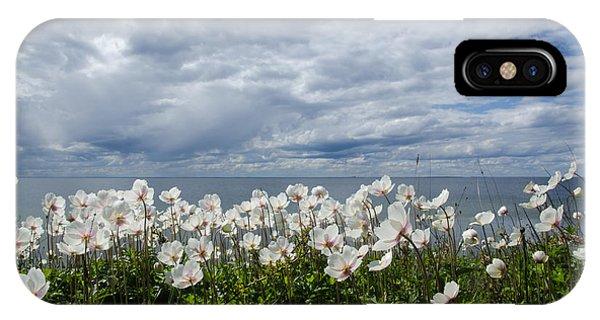 Coastal Backlit Anemones IPhone Case