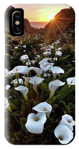 Coastal Calla Lilies IPhone Case