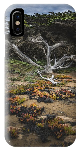 Coastal Guardian IPhone Case