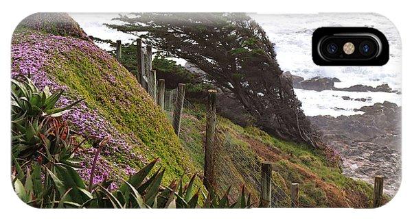 Coastal Windblown Trees IPhone Case