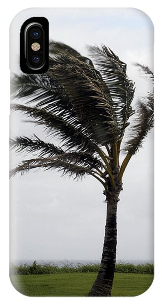 Coastal Winds IPhone Case