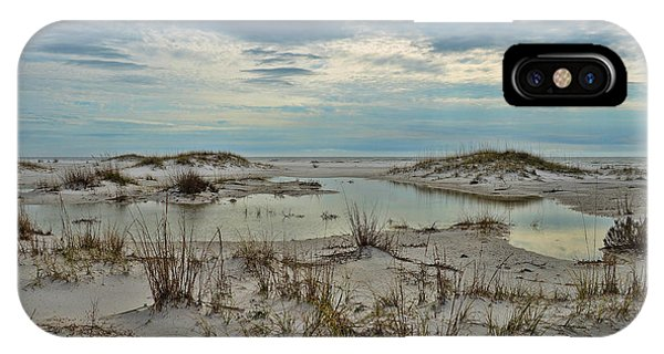 Coastland Wetland IPhone Case