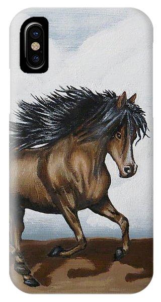 Coco IPhone Case