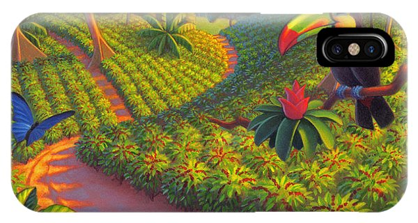 Parrots iPhone Case - Coffee Plantation by Robin Moline