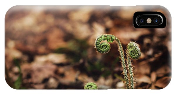 Coiled Fern Among Leaves On Forest Floor IPhone Case
