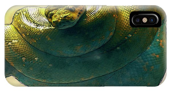 Burmese Python iPhone Case - Coiled by Jack Zulli
