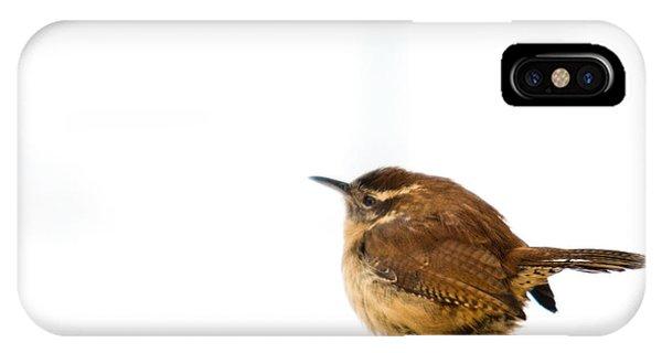 Crossville iPhone X Case - Cold Carolina Wren by Douglas Barnett