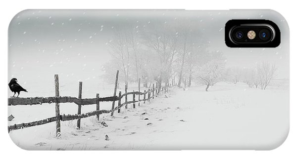 Cold Crow IPhone Case