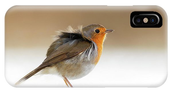 Cold Feet II - Little Red Robin In The Snow IPhone Case