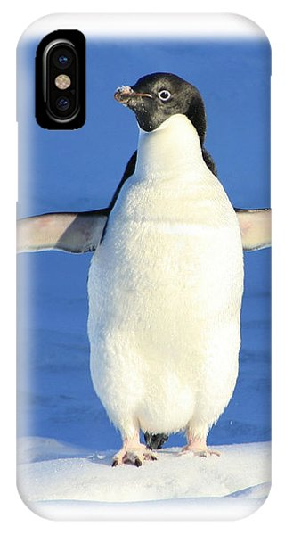 Cold Feet - Penquin In The Snow IPhone Case