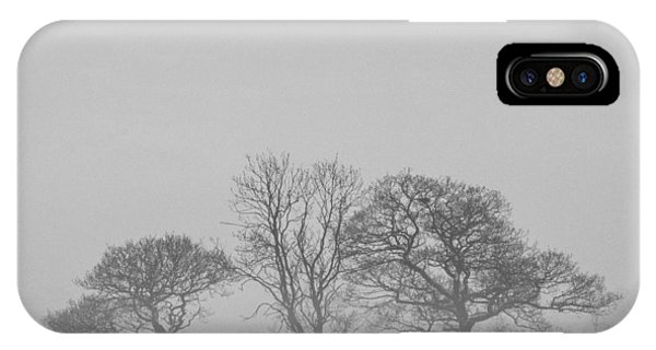 Cold Day iPhone Case - Three Trees by Chris Dale