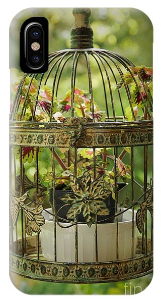 Coleus In Vintage Birdcage IPhone Case