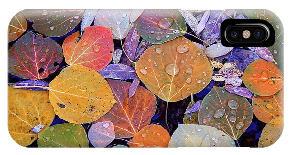 Collage Of Aspen Leaves At Mcgee Creek In The Eastern Sierras IPhone Case