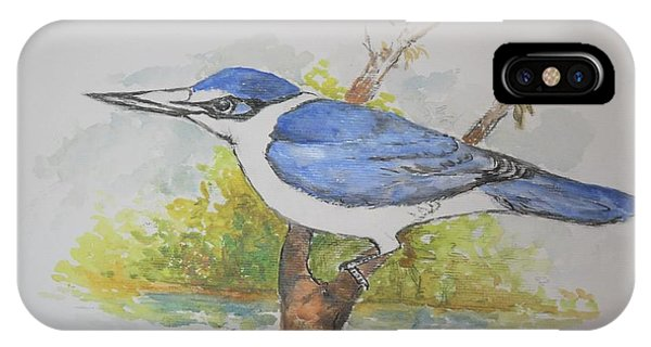 Collared Kingfisher IPhone Case