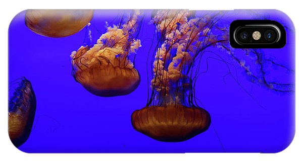 Collection Of Jellyfish IPhone Case